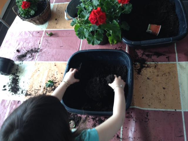 Activité jardinage