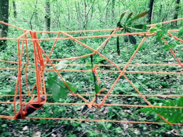 Land art...où l'art de ne faire plus qu'un avec la Nature